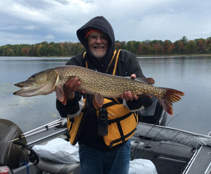 Dave R. caught and released this very nice 40-inch northern pike on Benoit Lake, October 1, 2019.  This established a new resort-record!  Congratulations David R!