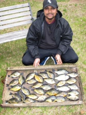 Feroz is new to fishing in the U.S.  This was his first time using a spinning rod in open water.  He was using wax worms under a bobber.  We caught these fish in 2 of the bays of Benoit Lake, May 22, 2019