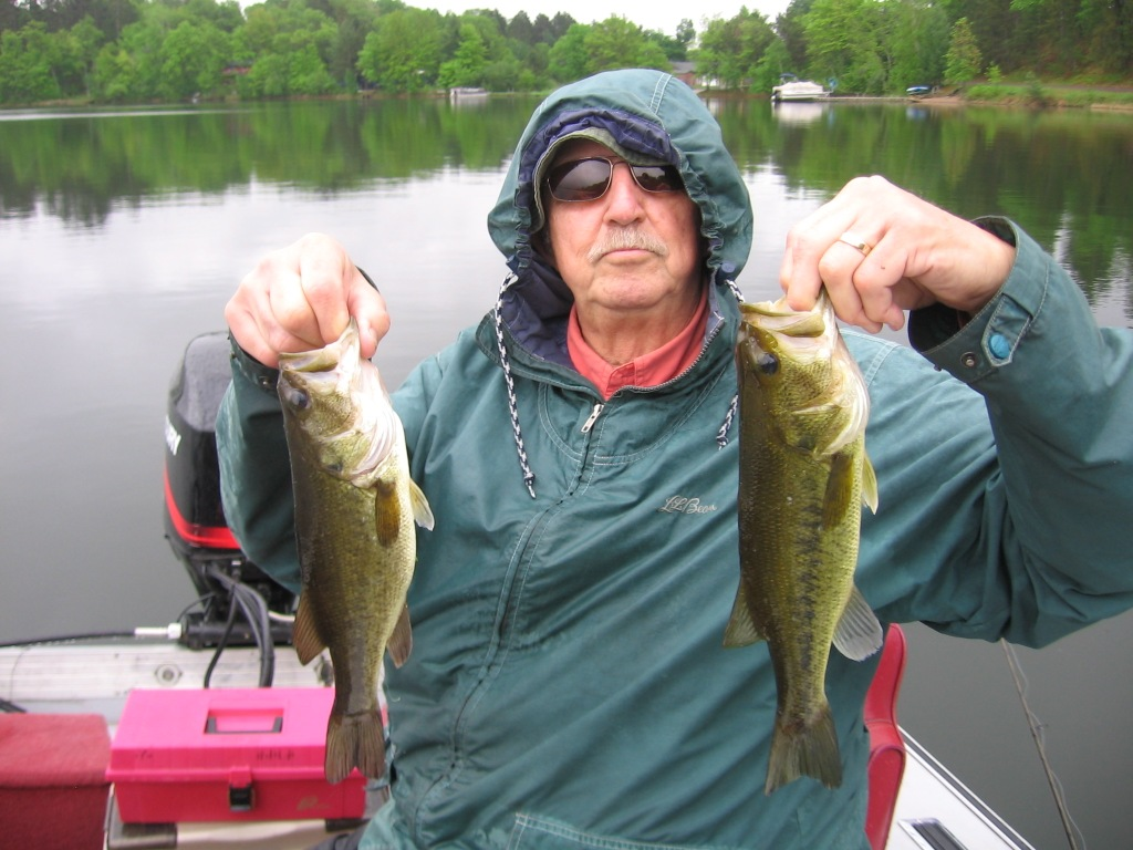 George N. with a couple of nice bass, Benoit Lake, June 2014.