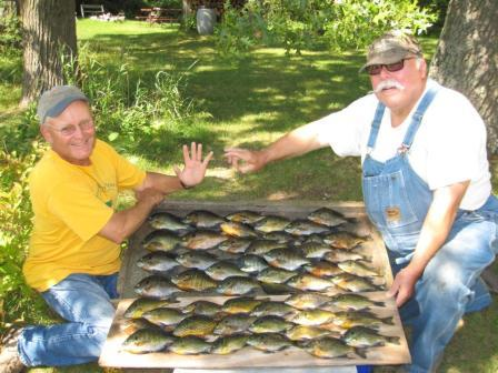 Dave Caithamer and Terry W. with a limit of bluegills they caught on a Burnett County, Wisconsin lake, August, 2017.
