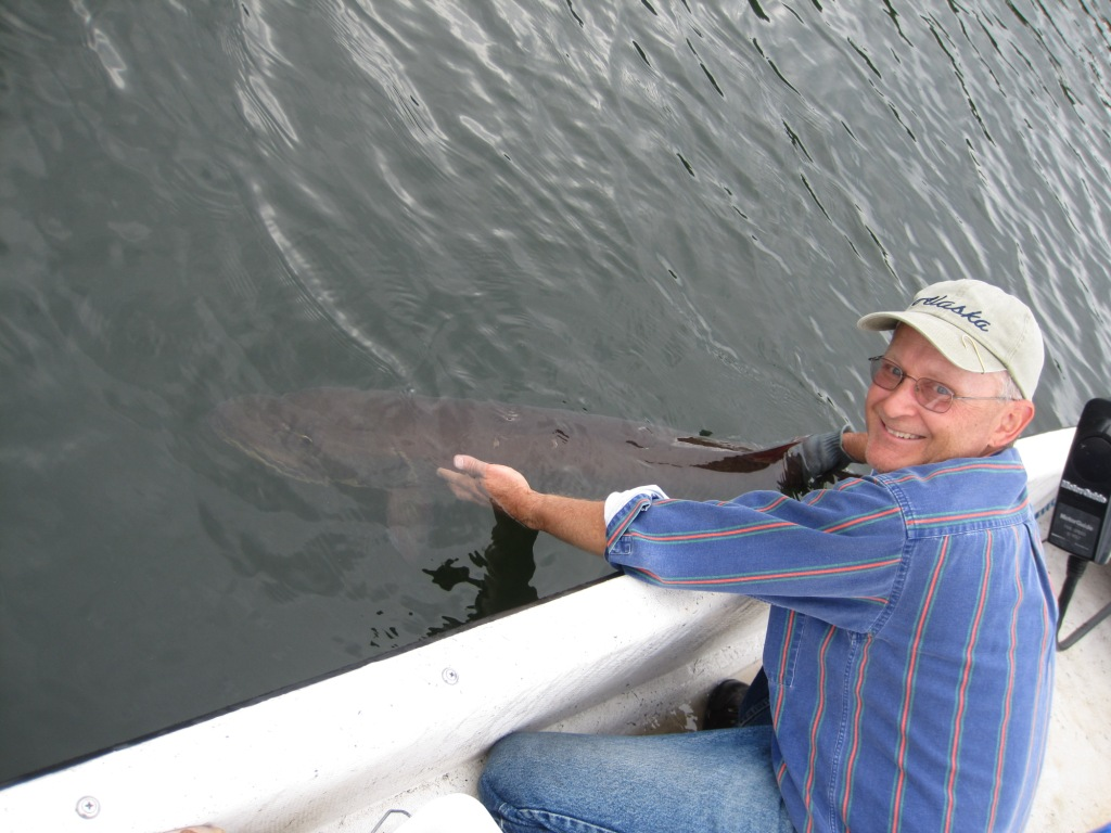 I released the 51-inch Benoit Lake musky.  It swam off strongly and right to the bottom.  Photo credit: Jacob Caithamer.